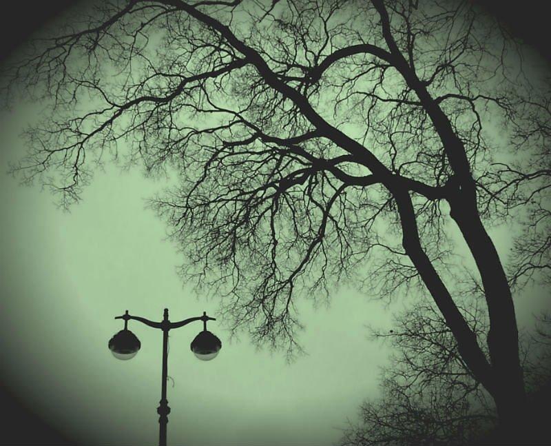фотография фонарь